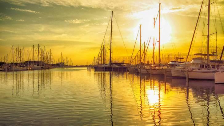 sailboats in the sun set launching