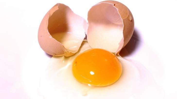 egg cracked open