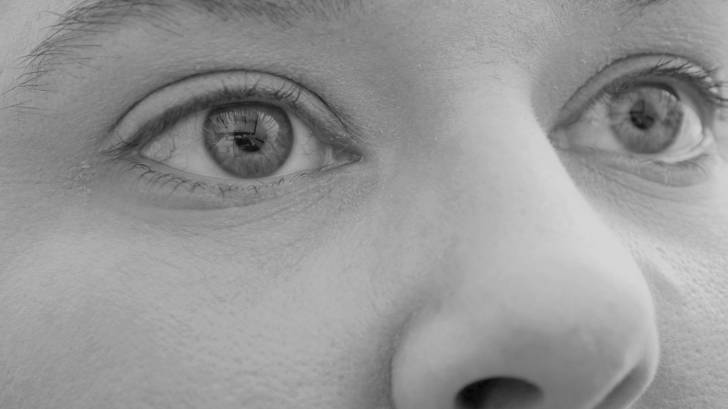eyes and nose of a woman
