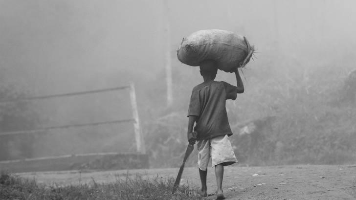 ugandan farmer in the mist