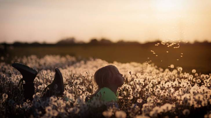 little girl playing in a field of flowers