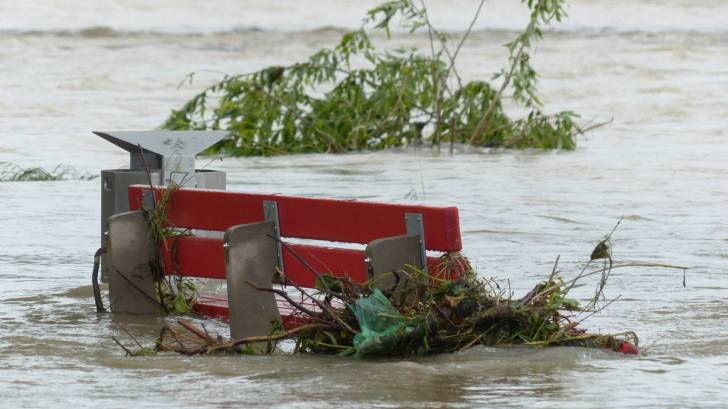 Flooded park with a park bench full of debris