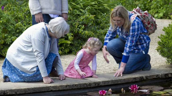 grand parents and grand child looking at a lily pond
