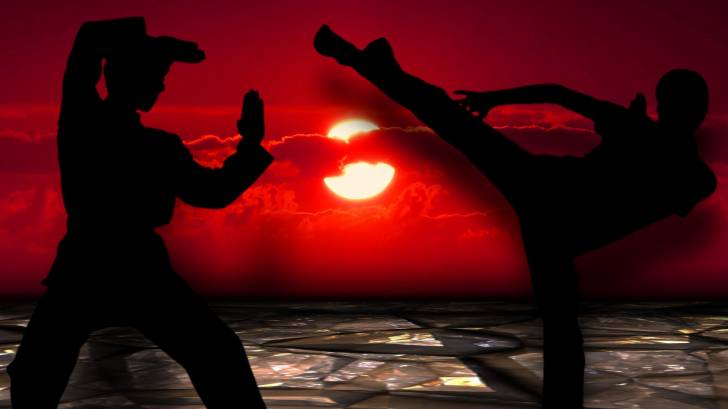 martial arts, 1 2 kick fight