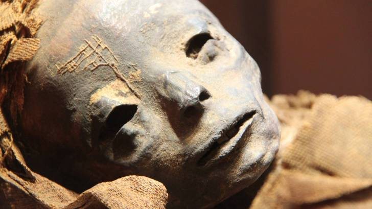 Ancient mummy's DNA reveals Hepatitis B virus existed since 16th centuries