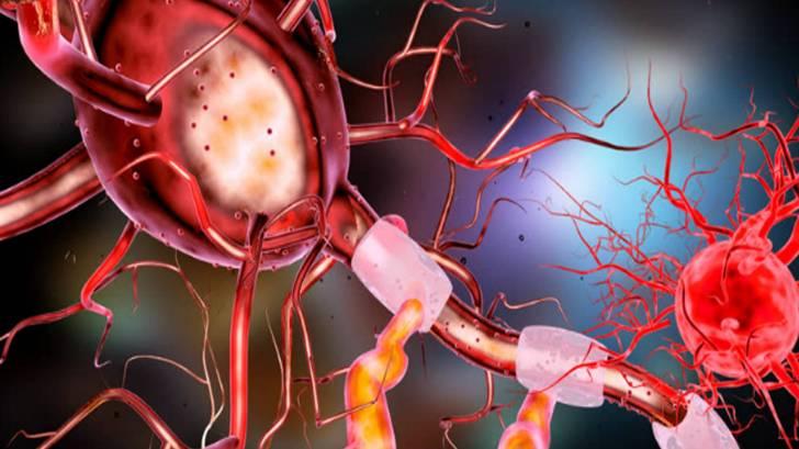 Brain neurons depiction