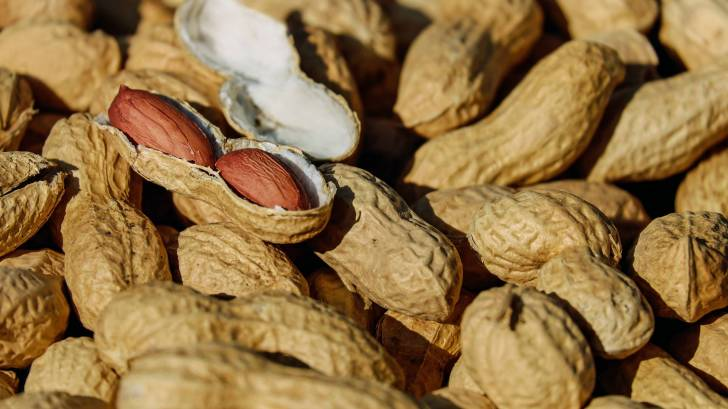peanuts in a shell