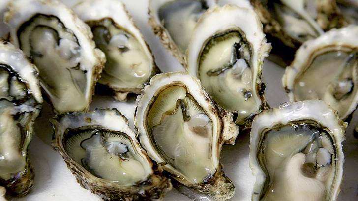 BC Oysters Have Sickened About 100 People In California