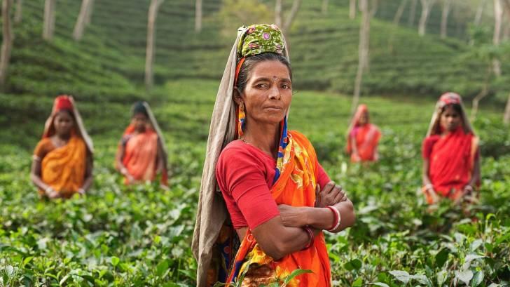 indian women in fields
