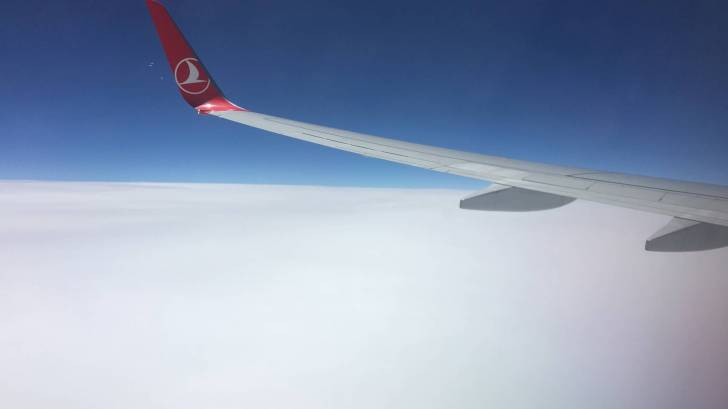 Turkish airline wing with logo on it