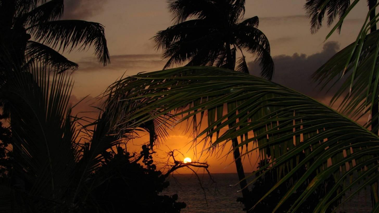 beach scene sun setting