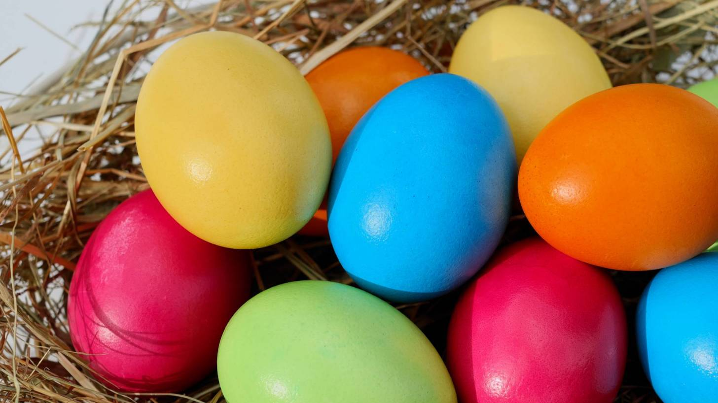 colored dyed easter eggs