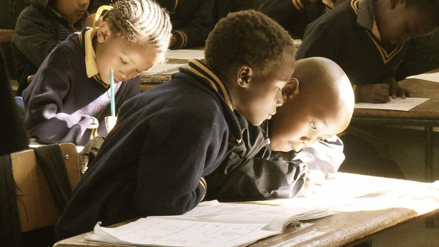 students in a classroom studying