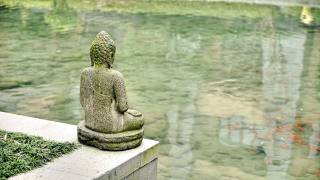 chinese budda statue on the water