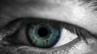 human eye ball