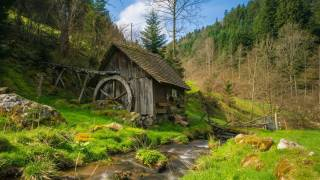 mill in the woods