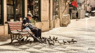 old man sitting on bench feeding birds