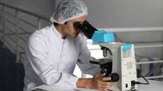 pharmacy researcher