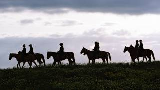 texas cowboys on horse bck riding at dusk