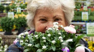 senior woman looking at flowers