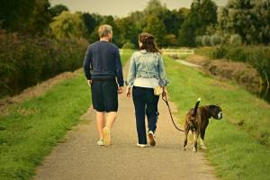 couple walking on a road with dog, healthy and happy