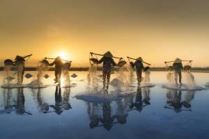 Vietnam salt harvestors in water